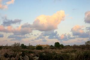 12 Landschaft Santanyi
